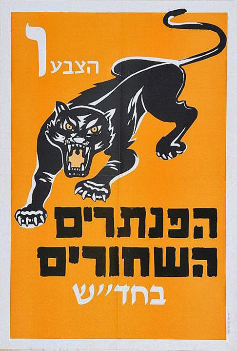 The Israeli Black Panthers focused on class issues, not nationalism, and believed that Israel's marginalised Mizrahim and Palestinian citizens were natural allies.